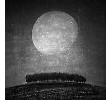 Moonlight serenade Photographic Print