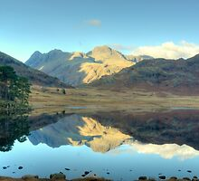 Autumn at Blea Tarn by Jamie  Green