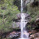 Minniehaha Falls, Katoomba, NSW by Martyn Baker | Martyn Baker Photography