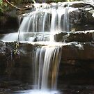 Leura Cascades, Blue Mountains, NSW by Martyn Baker   Martyn Baker Photography
