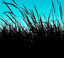 Reeds by Emir Simsek
