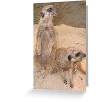Classic Collection: Can you see what I see? Greeting Card