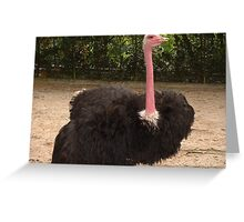 Classic Collection: Wide Load Greeting Card