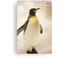 Penguin fun Canvas Print
