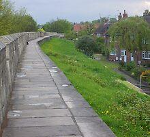 walking the walls of York by BronReid