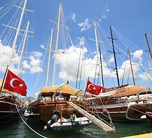 Seven Turkish flags, Bodrum, Turkey by fionapine