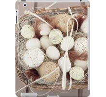 Eggs and feathers iPad Case/Skin