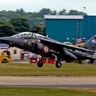 Alpha Jet by SWEEPER