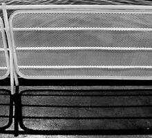 Two fences by Jeffrey  Sinnock