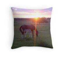 Bubbles and Stormie - Sunset on Walking Horse Acres Ranch Throw Pillow