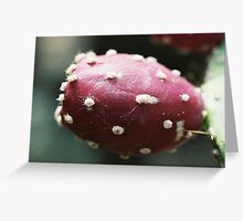 Prickly pear in Albuquerque Greeting Card