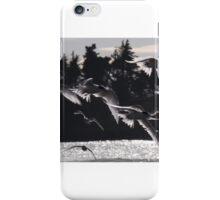 Light And Flight iPhone Case/Skin