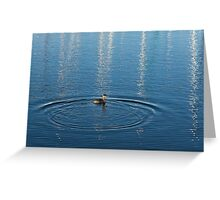 Ripples and Circles – Red-Necked Grebe Greeting Card