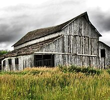 Barn, Urbandale Iowa by wileyphotoart