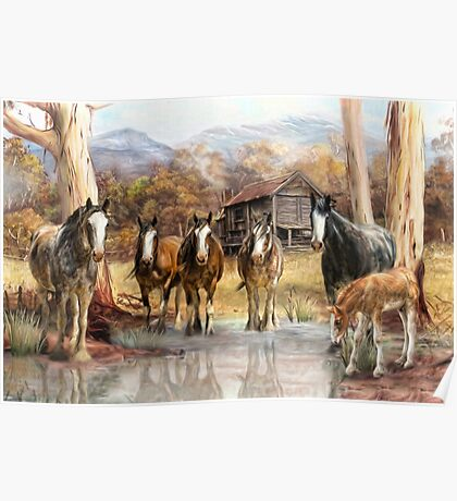 High Country Hideaway Poster