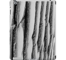 Winter Roof Black and White iPad Case/Skin