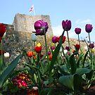 Clitheroe Castle by Martyn Baker | Martyn Baker Photography