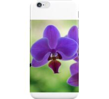 Purple orchid in green environment iPhone Case/Skin