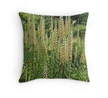 Cone Field Throw Pillow
