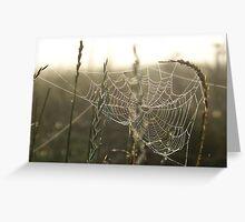morning weaver Greeting Card