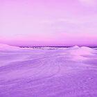 Lancelin Sand Dunes At Dusk  by EOS20