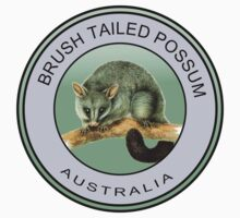 Australian brush tailed possum Kids Tee
