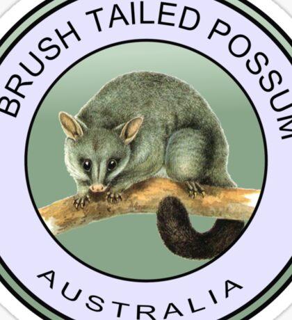 Australian brush tailed possum Sticker