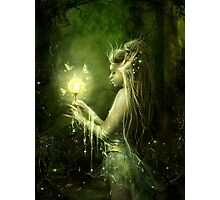 Lady of the swamp Photographic Print