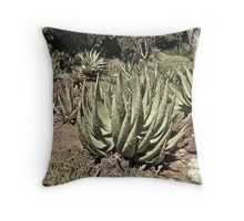 Untitled, California Throw Pillow