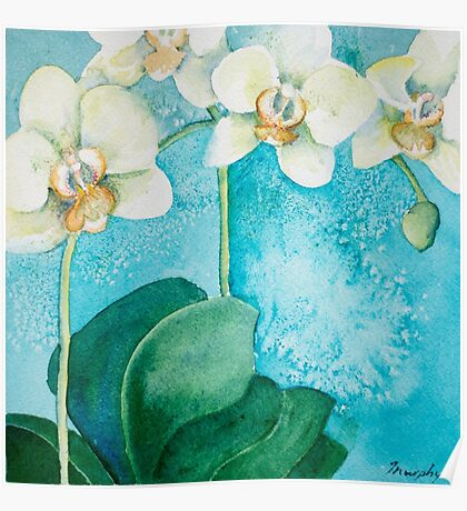 White Orchid Poster