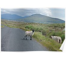 picture postcard Ireland? Poster
