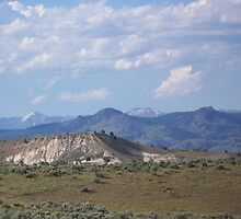 Denny Flat View of the Elkhorns - Eastern Oregon  by © Betty E Duncan ~ Blue Mountain Blessings Photography