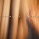 Falling or Fallen © Vicki Ferrari by Vicki Ferrari