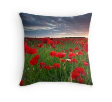 Sunset at the field Throw Pillow
