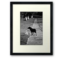 OnePhotoPerDay Series: 194 by L. Framed Print