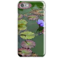 Nymphaea Nouchali - Purple Waterlilies | Old Westbury, New York  iPhone Case/Skin