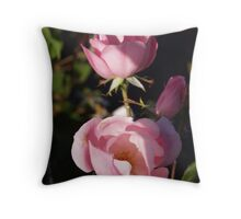 Maiden, Mother, Crone Throw Pillow
