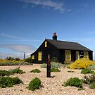 Prospect Cottage  Dungeness by mikebov
