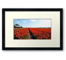There will always be the tulips Framed Print