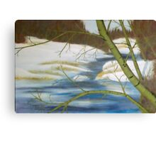Spring Break In The Bush Country Canvas Print