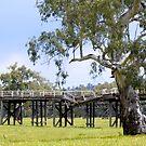 Abandoned Bridges - Gundagai, NSW, Australia by Martin Lomé