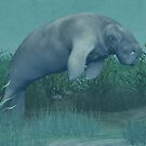 Manatee by Walter Colvin