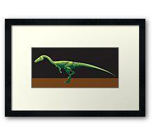 Coelophysis bauri, Full Figure Framed Print