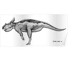 Protoceratops andrewsii Poster