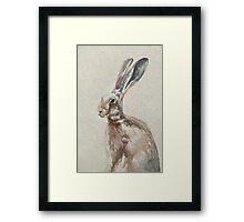 Spring Hare Framed Print