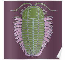 Triarthus eatoni Poster