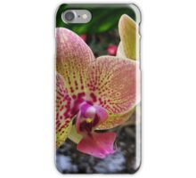 In memory of my brother Johan iPhone Case/Skin