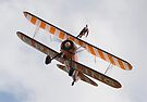 Breitling Stearman Wingwalker Collection by Nigel Bangert