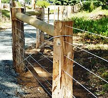 *New Post & Wire Fence around Walking path* by EdsMum