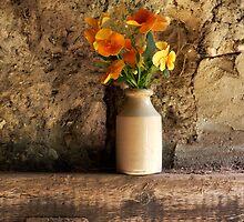 Orange Pansies by Kathy Wright